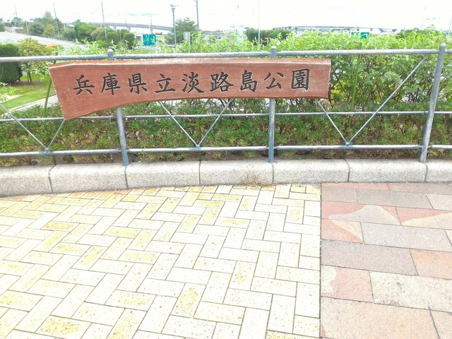 P_20160916_085908.jpg